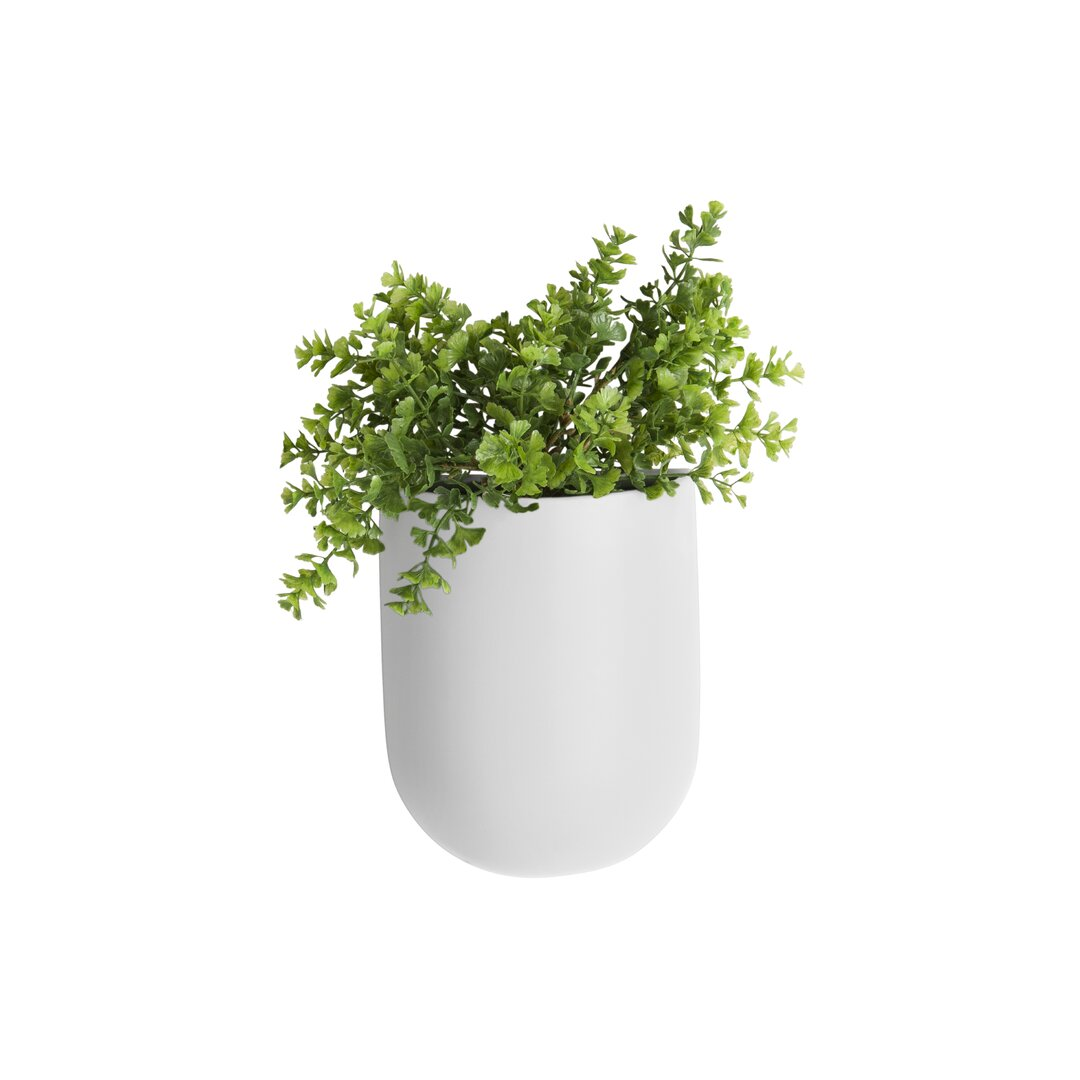 Coulter Oval Ceramic Wall Planter