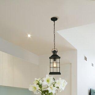 Longshore Tides Campuzano 1-Light Hanging Lantern