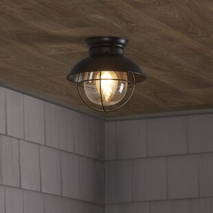 Beachcrest Home Brookfield 1-Light Semi Flush Mount