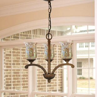 Apsley 3-Light Shaded Chandelier by Springdale Lighting