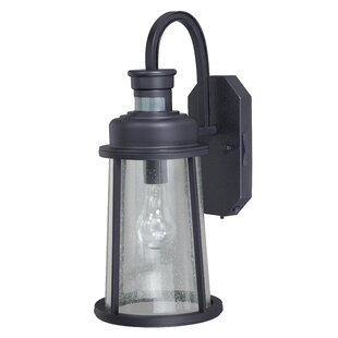 Buying Cascades 1-Light Outdoor Wall Lantern By Trent Austin Design