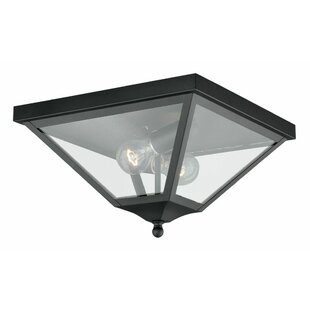 Darby Home Co Warlo 2-Light Flush Mount