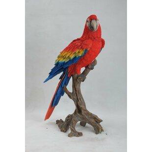 Hi-Line Gift Ltd. Macaw Statue