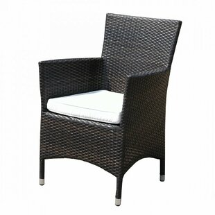 Garden Chair With Cushion By Bay Isle Home