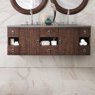 Hobbs 60 Double Bathroom Vanity by Ivy Bronx