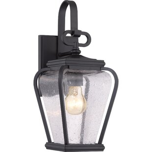 James 1-Light Outdoor Wall Lantern