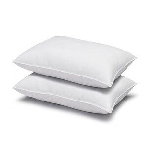 Cassiopeia Gel Fiber Pillow (Set Of 2) by Alwyn Home Coupon
