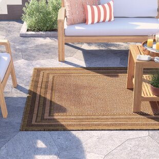 Delphine Light Brown Indoor/Outdoor Area Rug