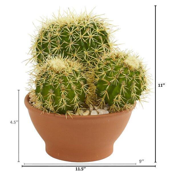Union Rustic Garden Artificial Cactus Plant In Planter Wayfair