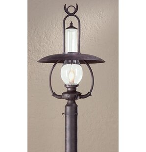 Theodore Industrial 1-Light Lantern Head by Darby Home Co