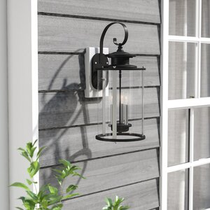 Evgenia 3-Light Outdoor Wall Lantern
