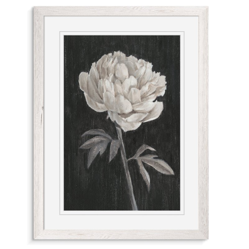One Allium Way Black And White Flowers I By Paul Cezanne Picture Frame Painting Print Wayfair