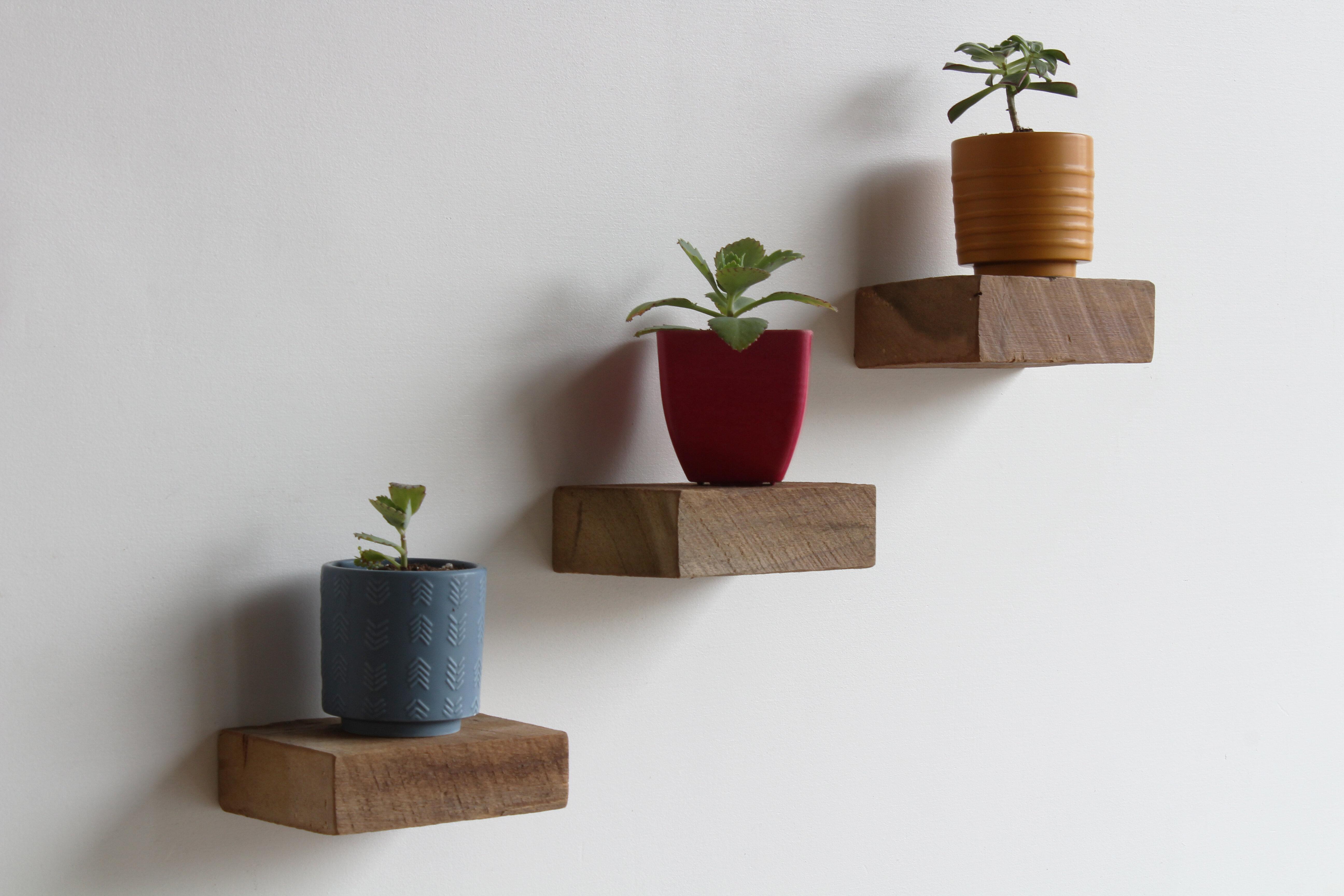 brayden studio salomon 3 solid wood floating shelf w
