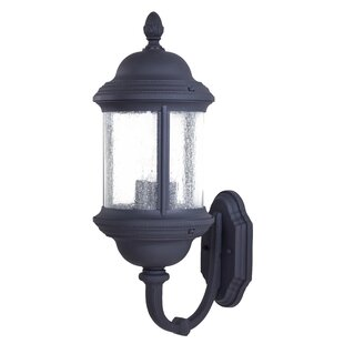 Great Outdoors by Minka Hancock 3-Light Outdoor Sconce