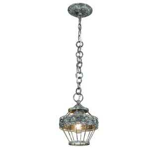 One Allium Way Cleo 1-Light Lantern Pendant