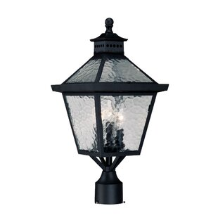 Buy luxury Britton Outdoor 3-Light Lantern Head By Darby Home Co