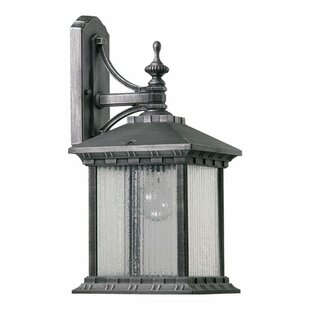 Affordable Schroeder 1-Light Outdoor Wall Lantern By Astoria Grand