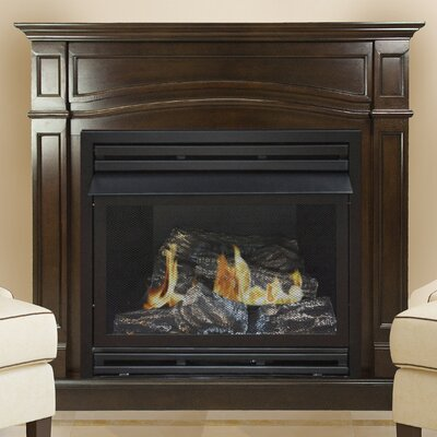 Shayne Vent Free Fireplace Darby Home Co Fuel type: Natural Gas