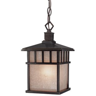 Teminot 1-Light Outdoor Hanging Lantern