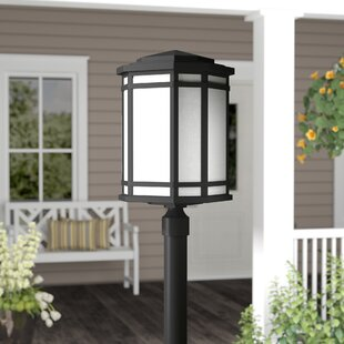 Chianna Outdoor 1-Light Lantern Head by Darby Home Co