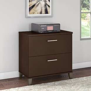 Ebern Designs Kirchoff 2-Drawer Lateral F..