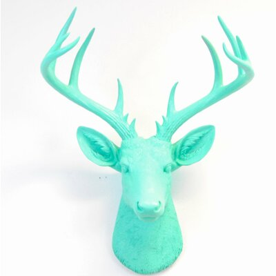 Brayden Studio Large Deer Head Faux Taxidermy Wall Décor Color: Aqua