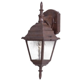 Bay Hill 1-Light Outdoor Wall Lantern