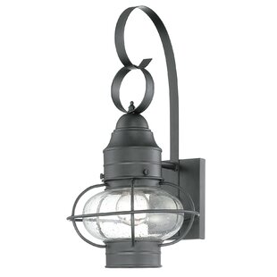 Francestown 1-Light Outdoor Wall Lantern