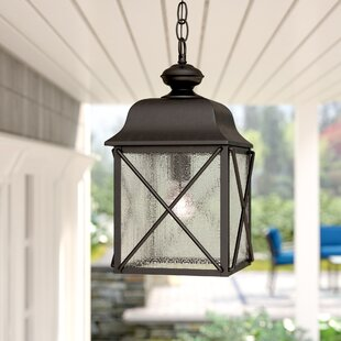 Topeka 1-Light Outdoor Hanging Lantern