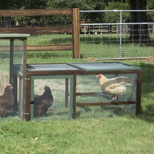 Hurton Chicken Run With Roosting Bar By Tucker Murphy Pet