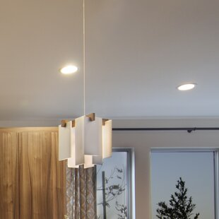 Cerno Salix 1-Light LED Novelty Pendant