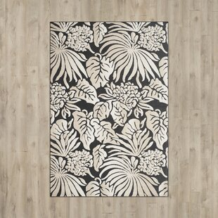 Best Reviews Patricia Black/Beige Indoor/Outdoor Area Rug By Beachcrest Home