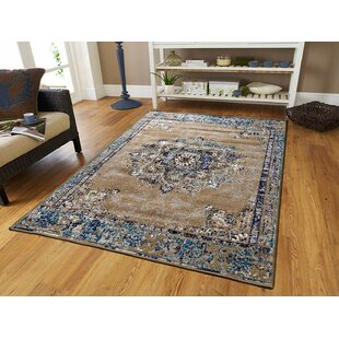 Schnabel Blue/Beige Indoor/Outdoor Area Rug