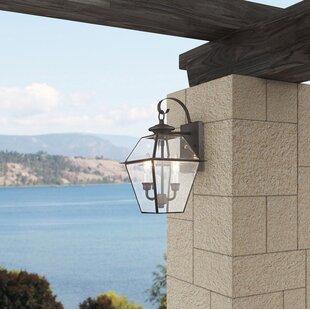 Three Posts Billips 2-Light Outdoor Wall Lantern