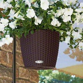 Nido Rattan Self-Watering Hanging Basket By Lechuza