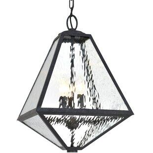 Brayden Studio Hankerson 3-Light Outdoor Pendant