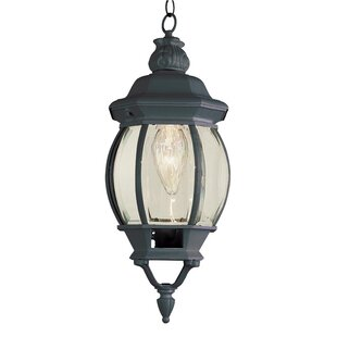 Claypool 1-Light Hanging Lantern by Astoria Grand