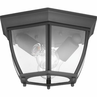 Alcott Hill Dunmore 2-Light Outdoor Flush Mount