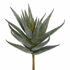 Artificial Aloe Vera Pick Succulent Plant (Set of 3)