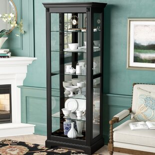 Darby Home Co Napier Lighted Curio Cabinet