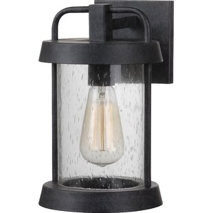 Best Reviews Arin 1-Light Outdoor Wall Lantern By Williston Forge