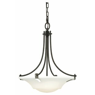 Alcott Hill Pompton 3-Light Bowl Pendant
