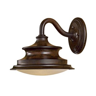 Vanira Place 1-Light Outdoor Barn Light