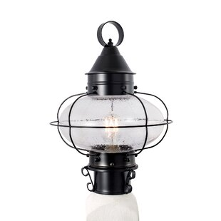 Reviews Wyckhoff Cottage Onion Medium Post 1-Light Lantern Head By Breakwater Bay