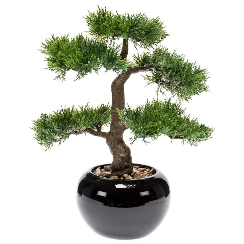 The Seasonal Aisle Desktop Cedar Bonsai Tree In Pot Wayfair Co Uk