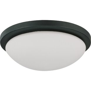 Price comparison Heflin Outdoor Flush Mount By Winston Porter