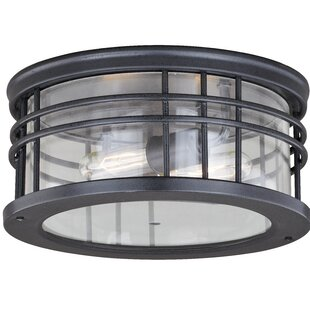 Sathvik Outdoor 2-Light Flush Mount