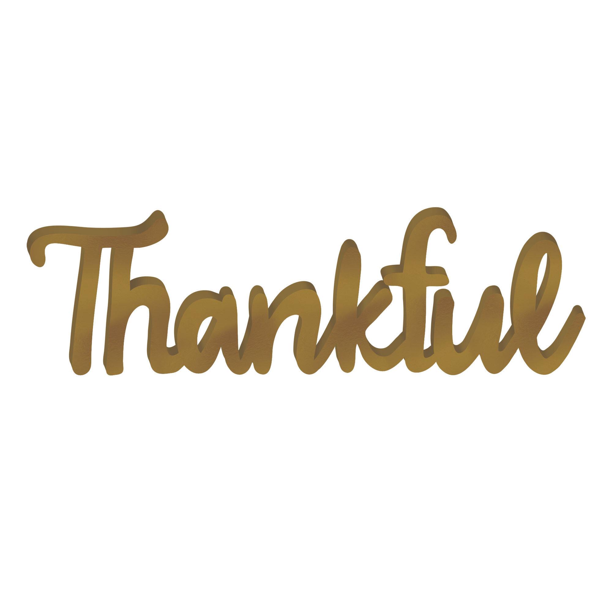 Amscan Autumn Thankful Script Sign Reviews Wayfair