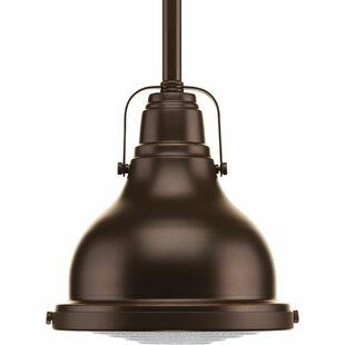 Williston Forge Asa 1-Light Bell Pendant