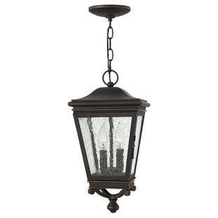 Charlton Home Pullins 2-Light Outdoor Hanging Lantern